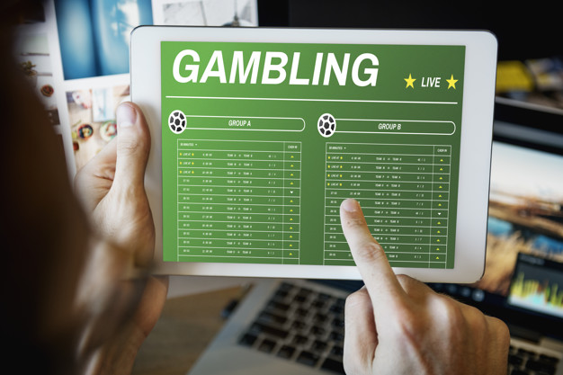 What Sports Bettors Do When There Are No Live Games?